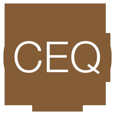 Coaching de Equipos (CEQ)